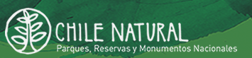 Logo chile natural fondo verde.png