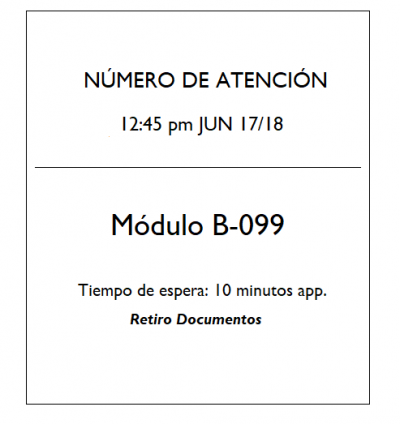Tickettotemautoatencion.png