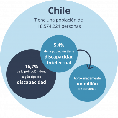 MvonUnger - Datos Discapacidad Chile.png