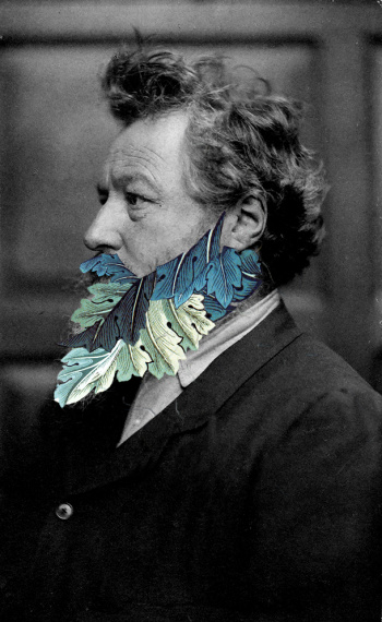William morris barba.jpg